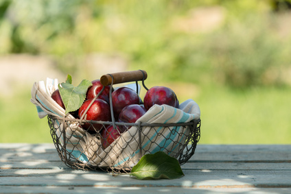 Fresh red apples in a wire basket